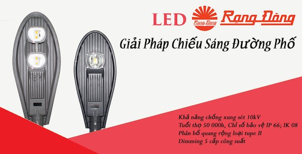 Đèn đường Led D CSD02L/60W Rạng đông