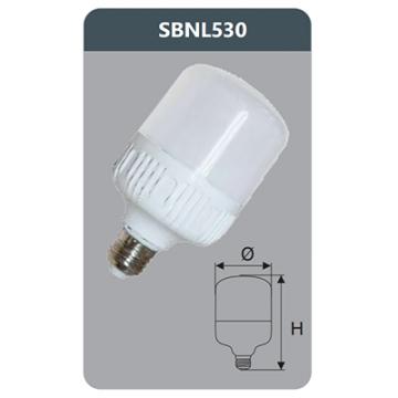 Đèn Led công suất cao 30W SBNL530 Duhal