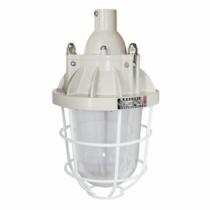 Đèn chống cháy nổ BCD 250 EEW Paragon