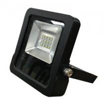 Đèn pha Led D CP05L/10W Rạng đông