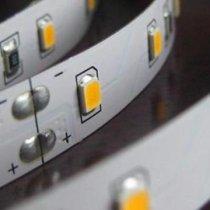 Đèn led dây 12W LED2835 Paragon